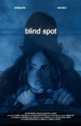 blind spot final poster